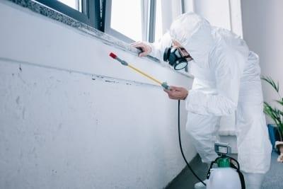 D-Tec Pest Solutions - Our Process