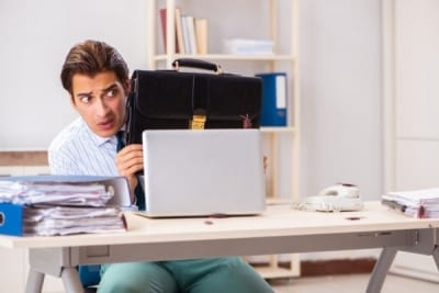 Pests found in your Office